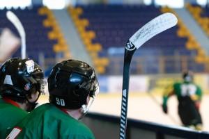 hockey-game-3209935_640